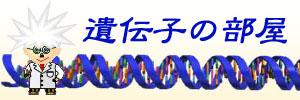 遺伝子の部屋のイメージ